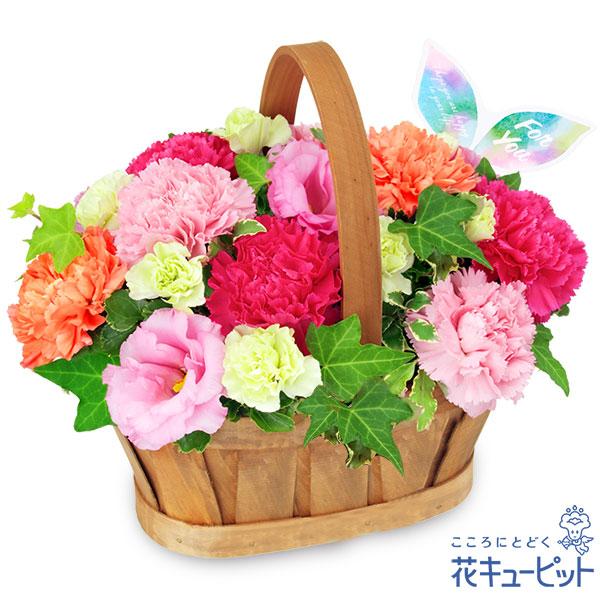 【誕生日フラワーギフト】カーネーションのハーモニーバスケット鮮やかなピンクの花々を詰めたバスケット