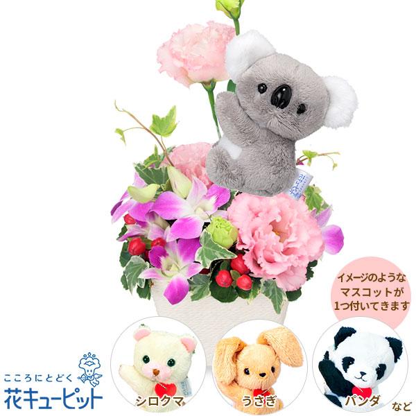【お祝い】トルコキキョウのマスコット付きアレンジメント上品な花々に動物のマスコットの可愛らしさをプラス