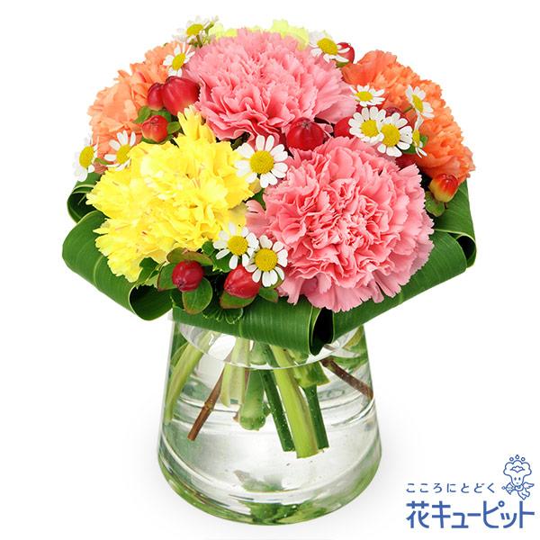 【友達に贈る誕生日フラワーギフト】カーネーションのグラスブーケ花もちの良いカーネーションを人気な色味で合わせました