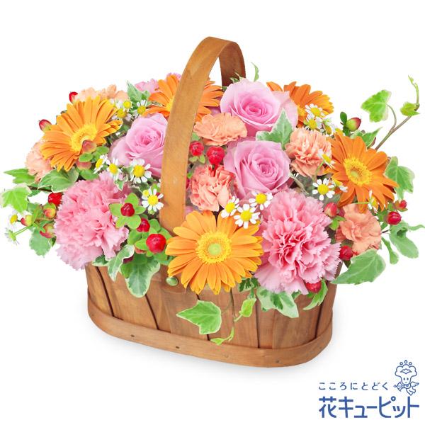 【ハロウィン フラワーギフト】ピンクとオレンジのハーモニーバスケット幅広い年代の方に喜んでもらえるかかわいらしいお花です