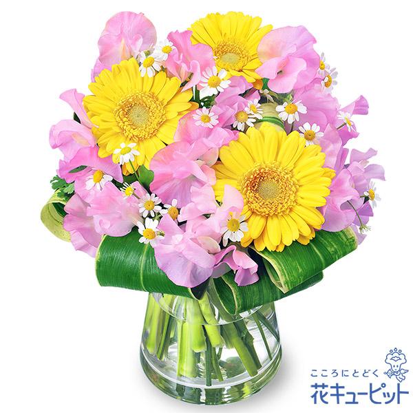 【誕生花 1月(スイートピー等)(法人)】スイートピーとガーベラのグラスブーケ