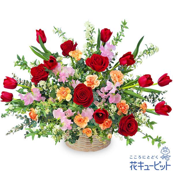 【誕生花 2月(チューリップ等)(法人)】赤チューリップの華やかアレンジメント