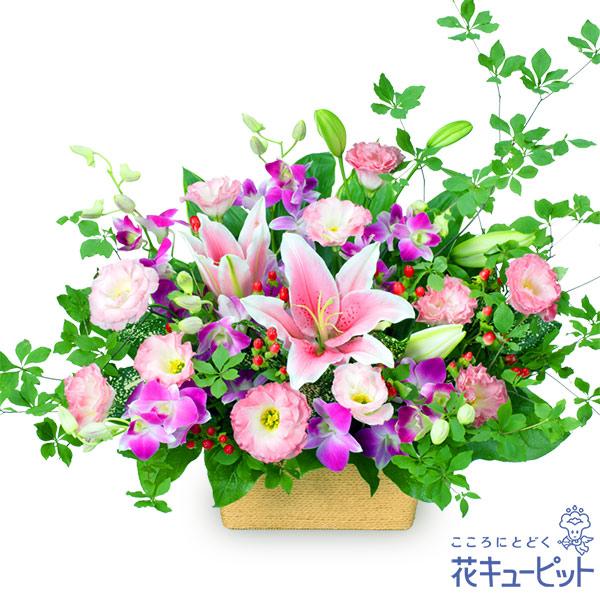 【お祝い】ピンクユリとデンファレのアレンジメント上品なユリとデンファレをたっぷりと使いました
