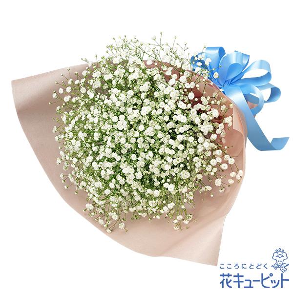 【ご出産祝い(法人)】カスミソウの花束