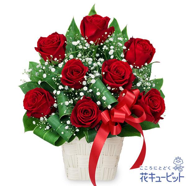 【誕生日バラ(法人)】赤バラのリボンアレンジメント