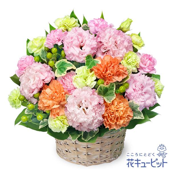 【新築引っ越し祝い】トルコキキョウの爽やかアレンジメント丸みのあるお花が優しい印象を与えます