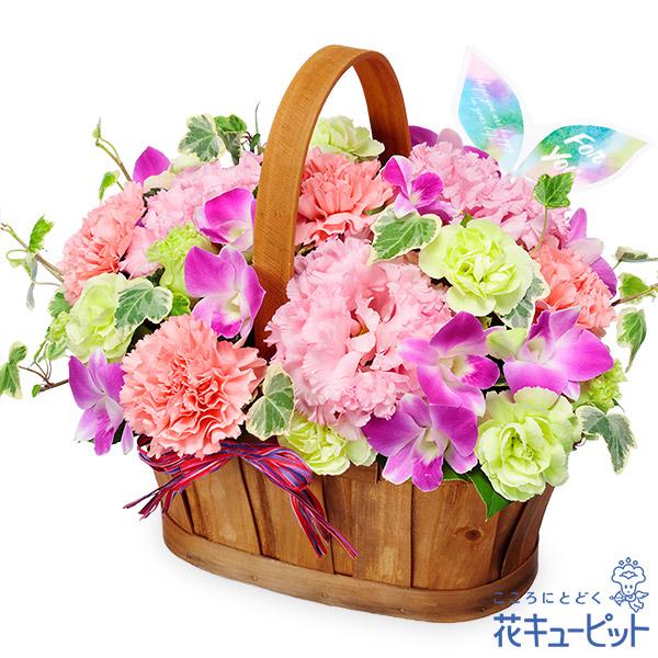【ご出産祝い(法人)】デンファレのハーモニーバスケット