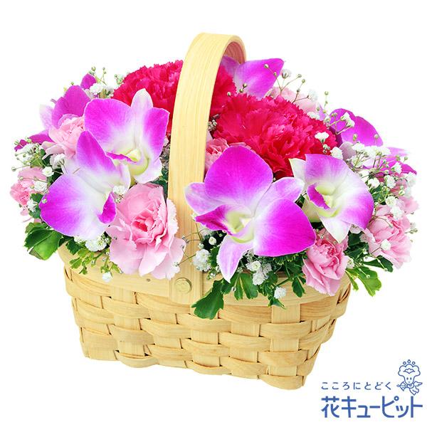 【お誕生日祝い(法人)】デンファレのウッドバスケット