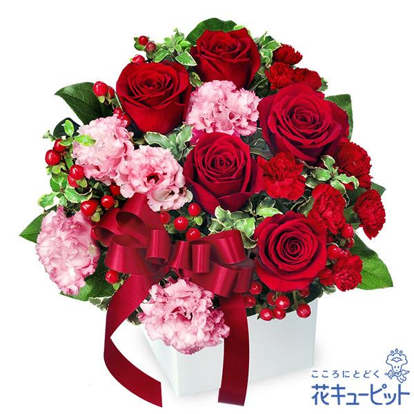 【お祝い】赤バラとリボンのキューブアレンジメント白いキューブと赤いリボンがポイントです
