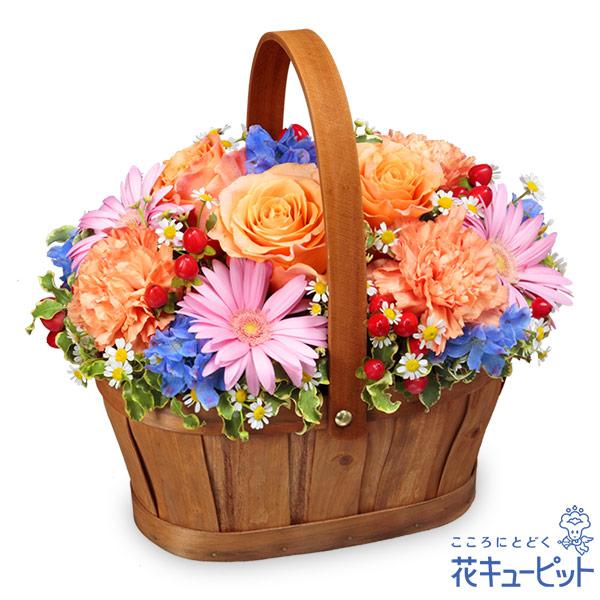 【誕生花 10月(オレンジバラ)(法人)】オレンジ&ピンク&ブルーのハーモニーバスケット