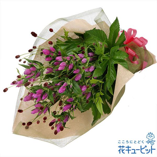 【お誕生日祝い(法人)】ピンクリンドウ花束