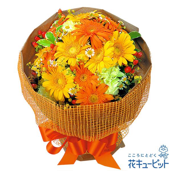 【誕生日フラワーギフト】イエローオレンジガーベラ花束ボリュームたっぷりのイエローオレンジのガーベラの花束!