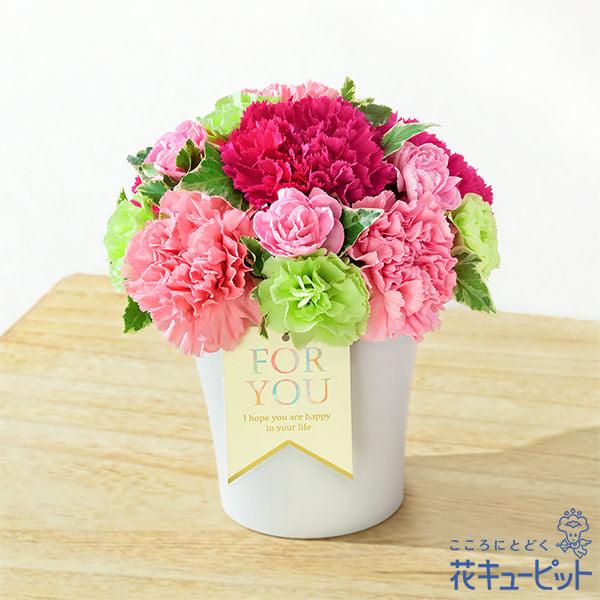 【母の日ギフト】グラマラス(ピンク)色鮮やかなグラデーションが母の日におすすめ