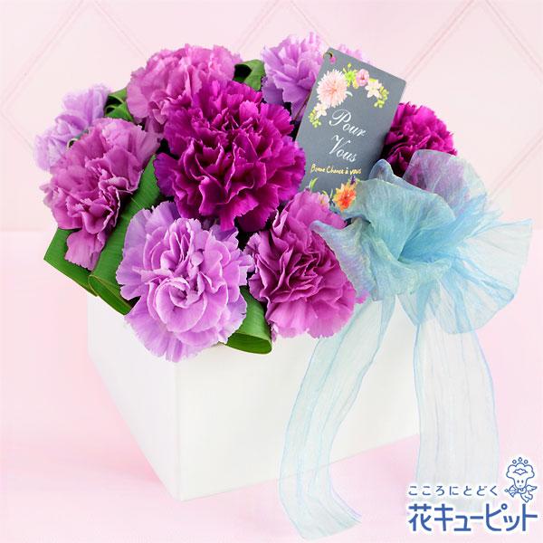 【母の日ギフト】ロマンチック(ムーンダスト)青いカーネーション・ムーンダストの特別なギフト