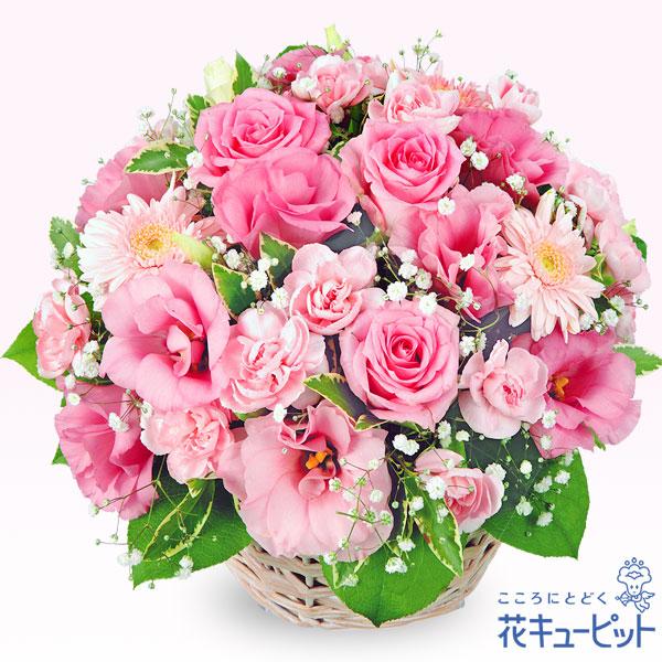 【お祝い】ピンクアレンジメントピンク色の花を一度に楽しめるアレンジメント