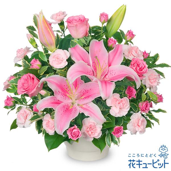 【お祝い】ピンクユリのコンポート ピンクユリとピンクバラの華やかなアレンジメント♪
