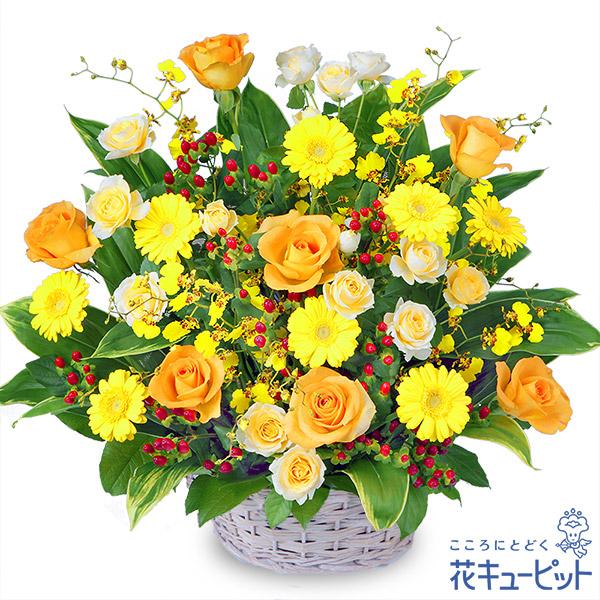 【お祝い(法人)】イエローオレンジのアレンジメント