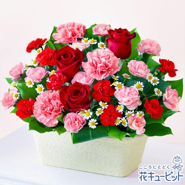 【母の日ギフト】赤バラとカーネーションのバスケット赤とピンクの花が母の日にぴったりです