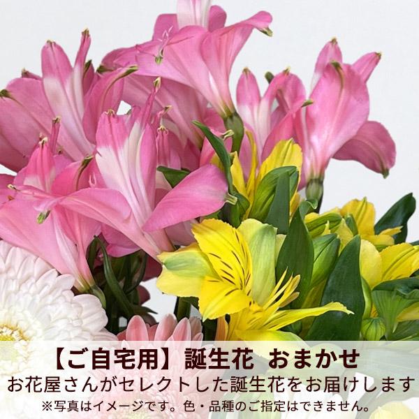 【ご自宅用】誕生花 おまかせ(アルストロメリア)
