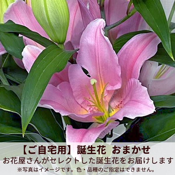 【ご自宅用】誕生花 おまかせ(ピンクバラ)