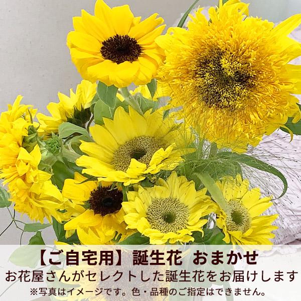 【ご自宅用】誕生花 おまかせ(ひまわり)
