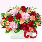 赤系の花|秋の花贈り特集 2019
