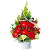 クリスマスの花 ギフト・プレゼント特集 TOP クリスマスの花 ギフト・プレゼント特集2021