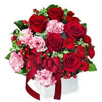 クリスマス 赤バラ アレンジメント クリスマスの花 ギフト・プレゼント特集2021