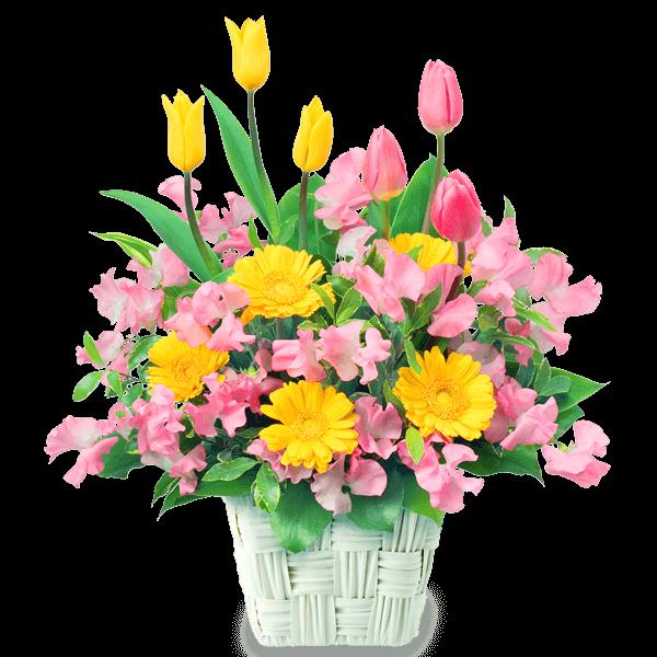 2月の誕生花カレンダー