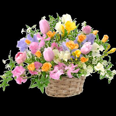 1月の誕生花カレンダー