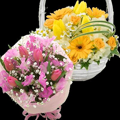 花キューピットタウン 春のお花特集