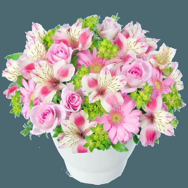 花キューピットの4月の誕生花・アルストロメリア