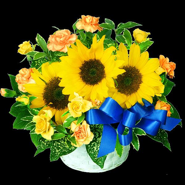 笑顔と元気を届ける ひまわりのギフト|花キューピットの父の日におすすめ!人気のプレゼント特集 2019