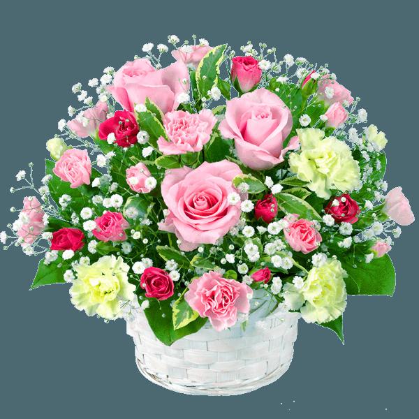 5月の誕生花カレンダー