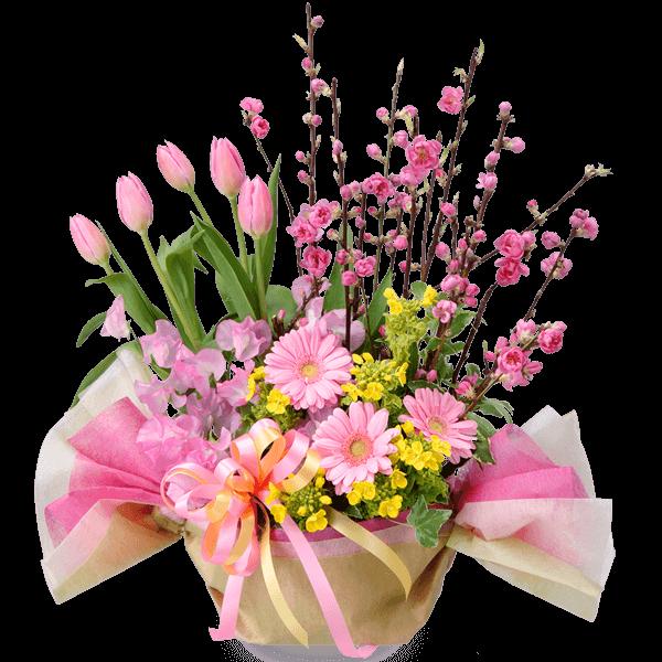 ひな祭りのギフト|花キューピットの春の花贈りにおすすめ!人気のプレゼント特集 2021