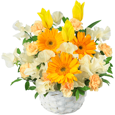 イエロー イエロー 笑顔と元気をくれる|花キューピットのチューリップ特集 2020