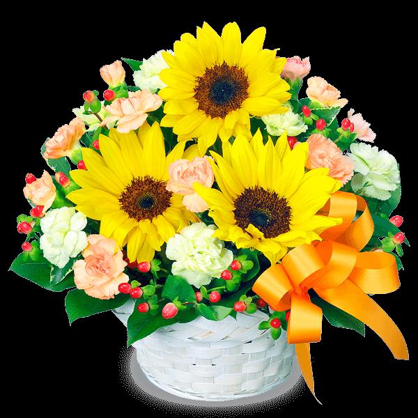 ひまわり 結婚記念日・結婚祝い特集2021
