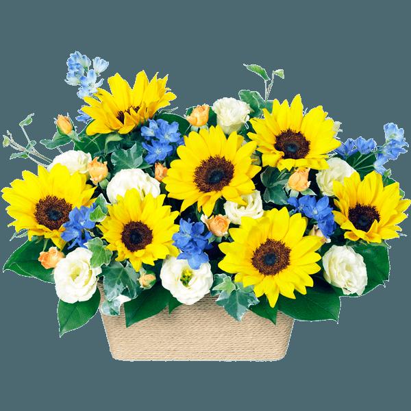 迷ったらこちら2019 父の日ランキング|花キューピットの父の日におすすめ!人気のプレゼント特集 2019