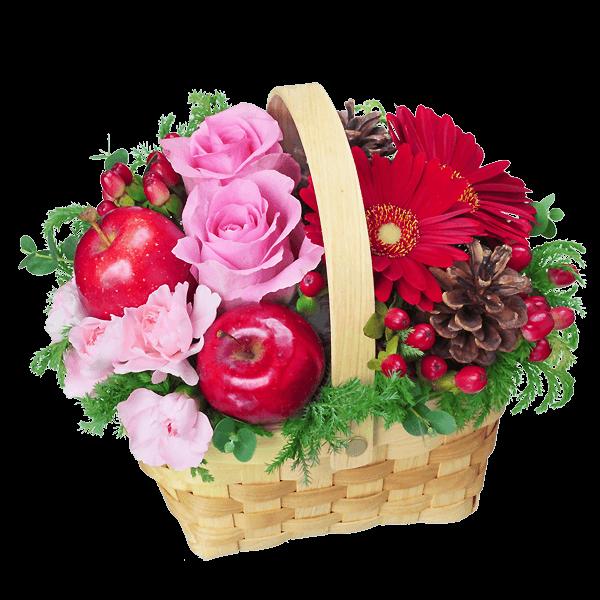冬の誕生日 冬の誕生日 冬生まれの方に贈る|花キューピットの冬の花贈り特集 2019
