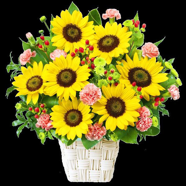 花キューピットの7月の誕生花・ひまわり