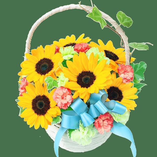 ひまわりのギフト|花キューピットの夏の花贈り特集におすすめ!人気のプレゼント特集 2020