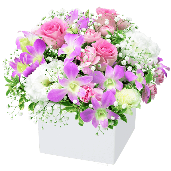 夏の結婚記念日<br>ギフト|花キューピットの夏の花贈り特集におすすめ!人気のプレゼント特集 2020