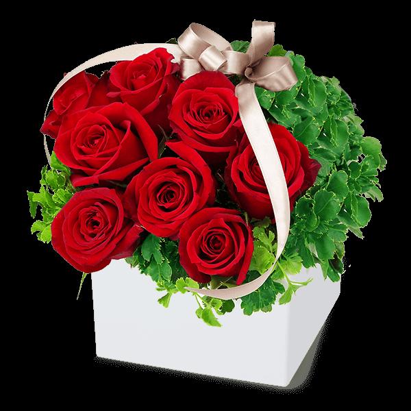 迷ったらこちら 2019 恋人・奥様に贈る|花キューピットのクリスマスにおすすめ!人気のプレゼント特集 2019