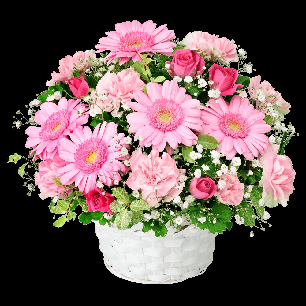 明るく親しみやすい花 ガーベラのギフト|花キューピットの秋の結婚結婚記念日におすすめ!人気のプレゼント特集 2019