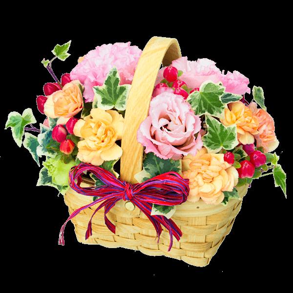 アレンジメント 夏の花贈り特集プレゼント特集2020