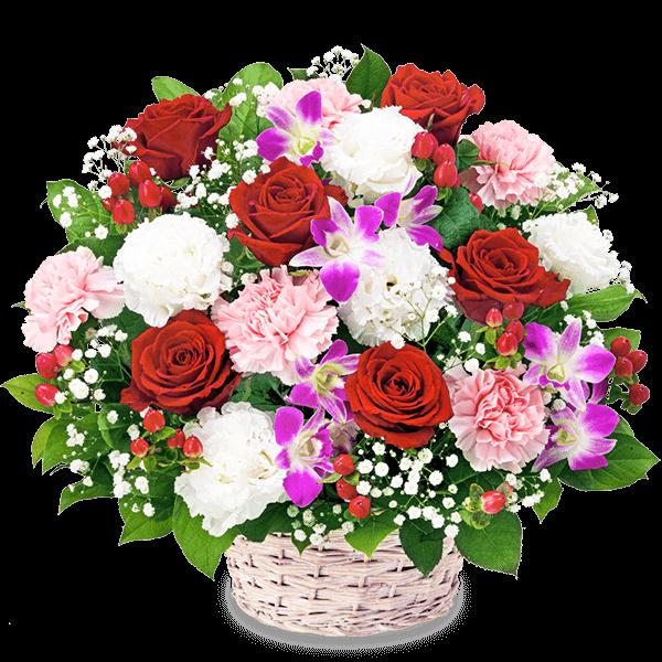 【新築引っ越し祝い】赤バラとデンファレのアレンジメント