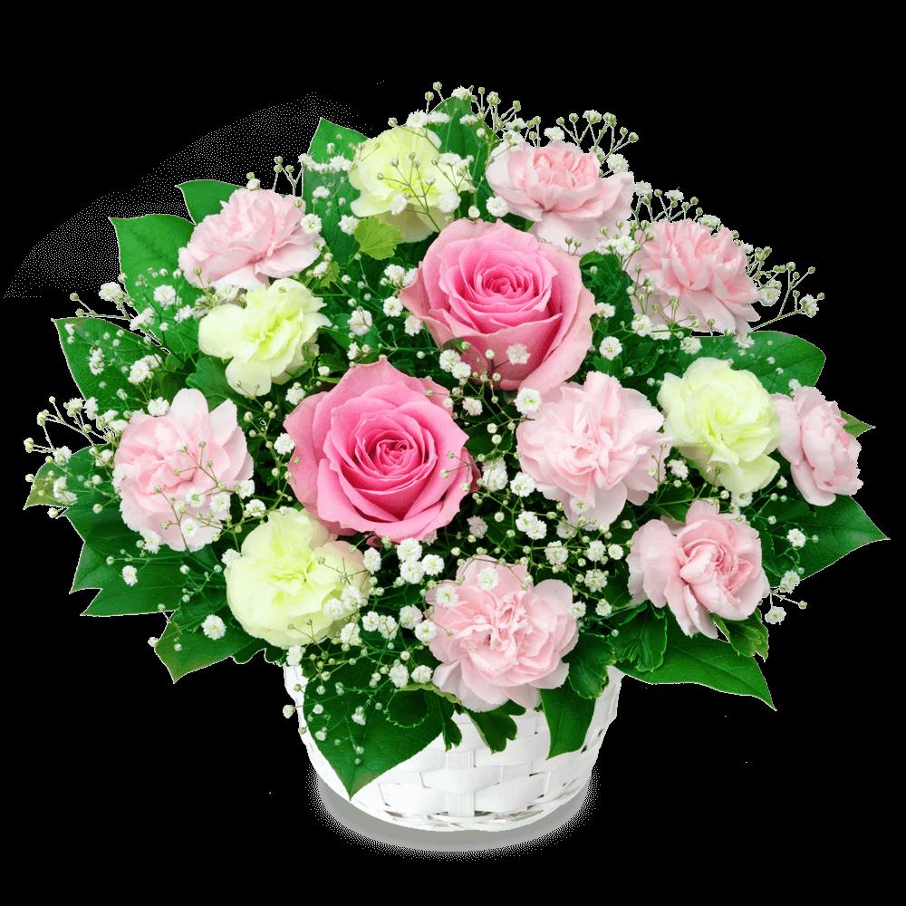 ピンクバラ フラワーバレンタイン