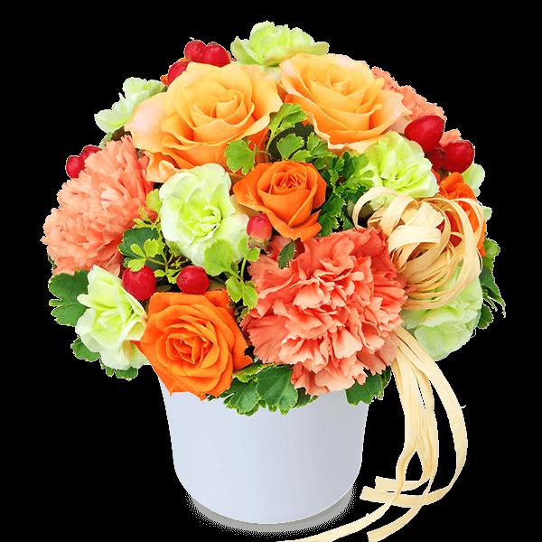 ご両親に贈る<br>プレゼント|花キューピットのいい夫婦の日特集におすすめ!人気のプレゼント特集 2020