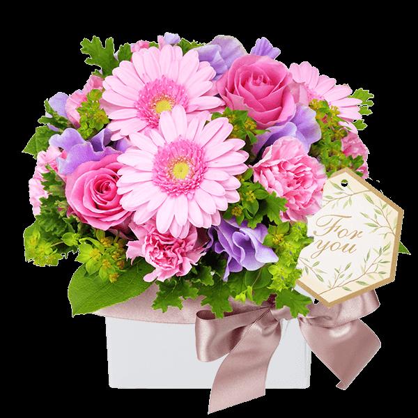 【3月の誕生花(ピンクガーベラ等)】バラとガーベラのキューブアレンジメント