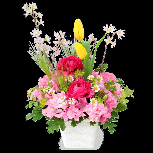 卒業・入学祝いの<br>ギフト|花キューピットの春の花贈りにおすすめ!人気のプレゼント特集 2021